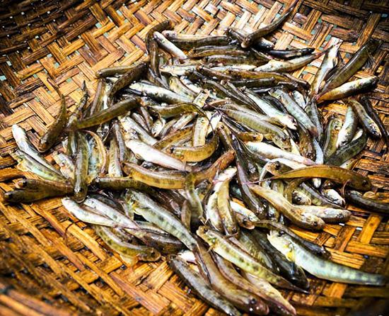 Lai Châu – Vẻ đẹp tiềm ẩn: Phần 2 - Những món ăn khó quên