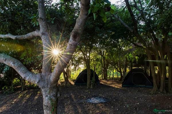 Trekking 7 km xuyên rừng và cắm trại trong lòng hồ Trị An